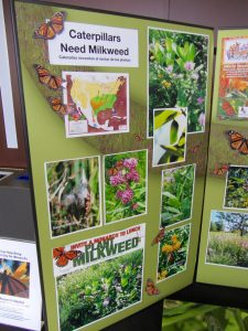 DWN 2016 - Wild for Monarchs display #1, IMG_3477