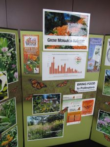 DWN 2016 - Wild for Monarchs display #2, IMG_3473